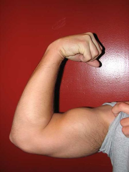 Not my muscle, but I like to think that if my writerly determination was turned into a wrestler, that's what it's arm would look like. ;)