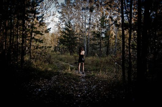 800px-in_the_dark_woods_5107954480