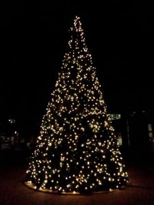 White_Christmas_Tree_Lights_at_Night