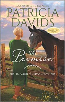 Pat Davids's cover